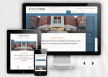 Mobile Responsive Websites