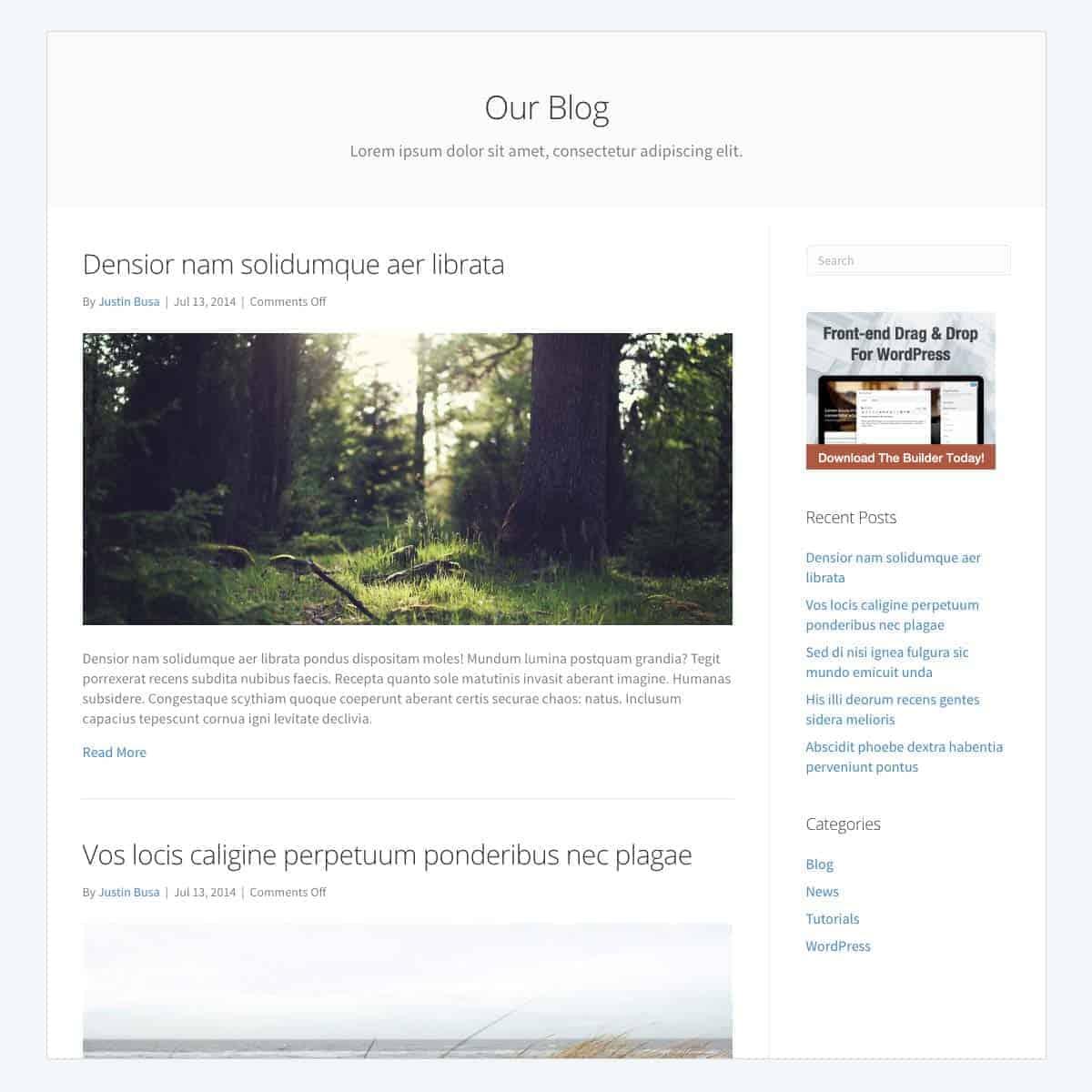 standard-blog-template